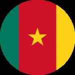 Diaspoassur Cameroun